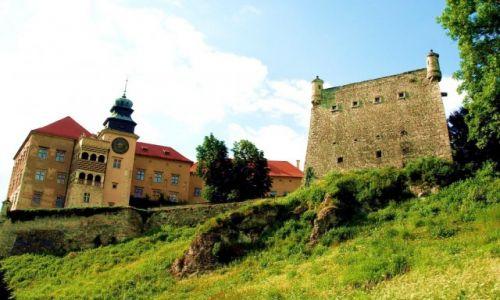 Zdjecie POLSKA / Małopolska / Pieskowa Skała / Zamek