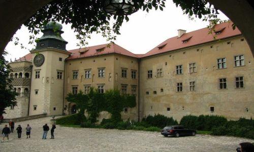 Zdjęcie POLSKA / Jura Krakowsko - Częstochowska / dolina Prądnika / Zamek Na Pieskowej Skale
