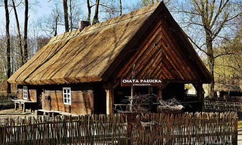 Zdjęcie POLSKA / - / Biskupin / Chata Pałucka