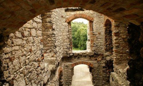 Zdjęcie POLSKA / Jura Krakowsko - Częstochowska / wieś Podzamcze / zamek w Ogrodzieńcu