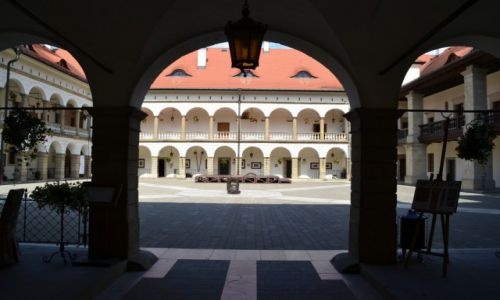 Zdjecie POLSKA / małopolska / Niepołomice / Zamek Królewski w Niepołomicach