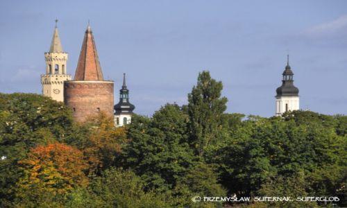 Zdjęcie POLSKA / Opolszczyzna / Opole / Wieże Opola