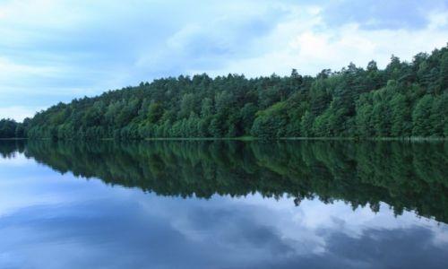 Zdjecie POLSKA / Pomorze / Sulęczyno / Nad jeziorem Guścierz Mały