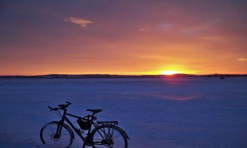 Zdjęcie POLSKA / Podkarpacie / Milcza / Na zimowo