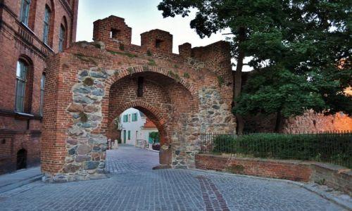 POLSKA / Kujawsko-Pomorskie / Toruń / Toruń, ruiny zamku