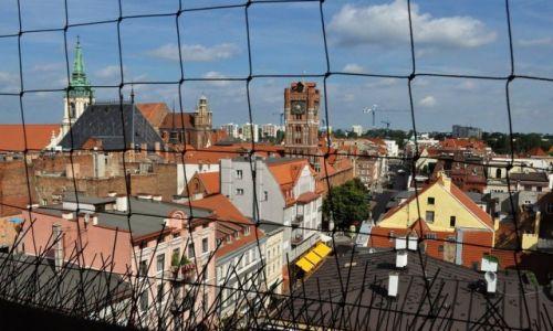 POLSKA / Kujawsko-Pomorskie / Toruń / Toruń, katedra św. Janów, widok z wieży