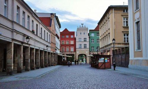 Zdjęcie POLSKA / Kujawsko-Pomorskie / Toruń / Toruń, zakamarki