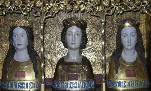 Zdjęcie POLSKA / Warmińsko - mazurskie / Frombork / Święte z Fromborskiej Katedry