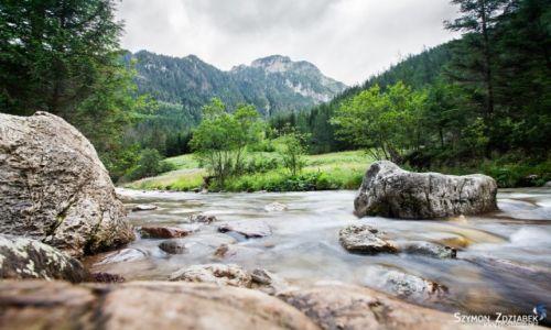 Zdjęcie POLSKA / Tatry / Dolina Kościeliska / W Dolinie Kościeliskiej