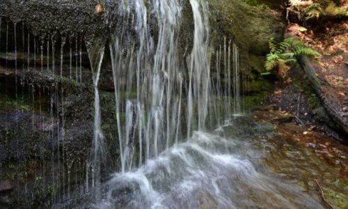Zdjęcie POLSKA / Beskid Mały / Zachodnie zbocza Pośredniego Gronia / Wodospad Dusica