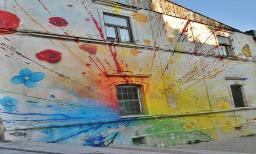 Zdjęcie POLSKA / Małopolska / Tarnów / Tarnów, murale