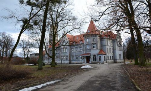 Zdjecie POLSKA / Śląskie / Nakło Śląskie / Pałac Donnersmarcków