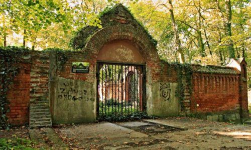 Zdjecie POLSKA / Kujawsko-Pomorski / Ostromecko / Grobowiec-mauzoleum rodziny Schoenborn.