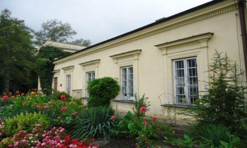 Zdjęcie POLSKA / Województwo łódzkie / Skierniewice / W parku pałacowym (2)
