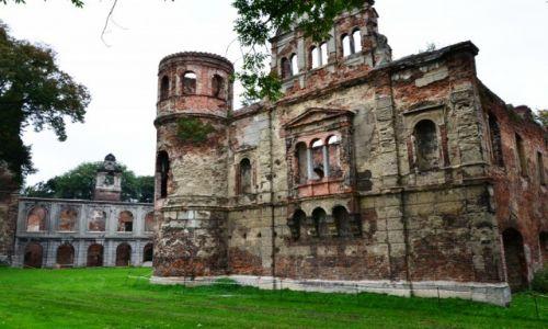 Zdjecie POLSKA / Śląskie / Tworków / Ruiny Pałacu