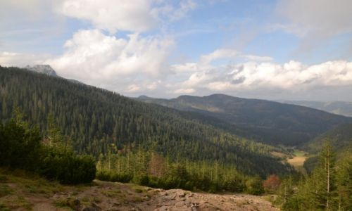 Zdjecie POLSKA / Tatry / Przełęcz Między Kopami / Widok na Dolinę Jaworzynki