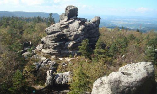 Zdjęcie POLSKA / Park Narodowy Gór Stołowych / Szczeliniec Wielki / Kaczka
