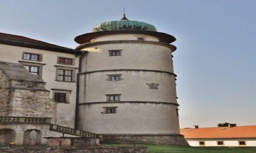 Zdjęcie POLSKA / Małopolska / Nowy Wiśnicz / Nowy Wiśnicz, zamek