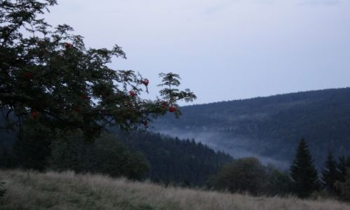 Zdjęcie POLSKA / Dolnośląskie / Schronisko Orzeł / Góry Sowie