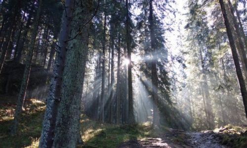 Zdjecie POLSKA / Małopolska / Tatry / Promienie słoneczne