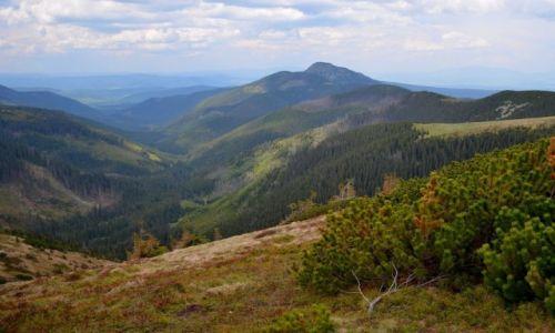 Zdjęcie POLSKA / Tatry Zachodnie / Grześ (1653 m n.p.m.) / widok ze szczytu