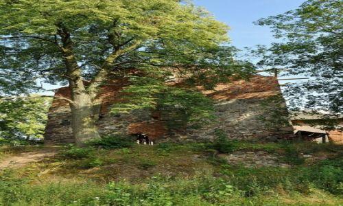 POLSKA / Kujawsko-Pomorskie / Nowy Jasiniec / Nowy Jasiniec, ruiny zamku
