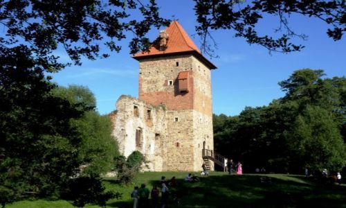 Zdjecie POLSKA / -Śląskie / Chudów / Ruiny zamku w Chudowie