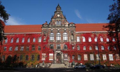 Zdjecie POLSKA / Dolny Śląsk / Wrocław / Muzeum Narodowe we Wrocławiu
