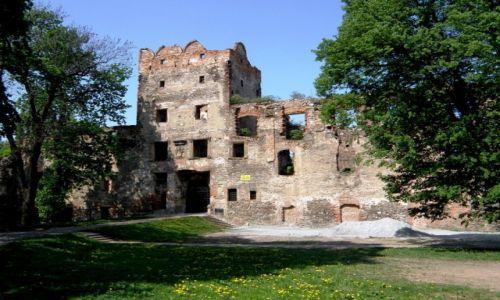 Zdjęcie POLSKA / Dolnośląskie / Ząbkowice Śląskie / Ruiny Zamku