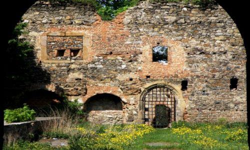 Zdjęcie POLSKA / Dolnośląskie / Ząbkowice Śląskie / Ruiny Zamku 2