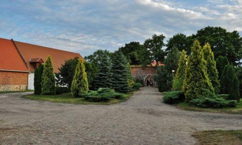 Zdjęcie POLSKA / Kujawsko-Pomorskie / Bierzgłowo / Bierzgłowo, zamek Krzyżacki