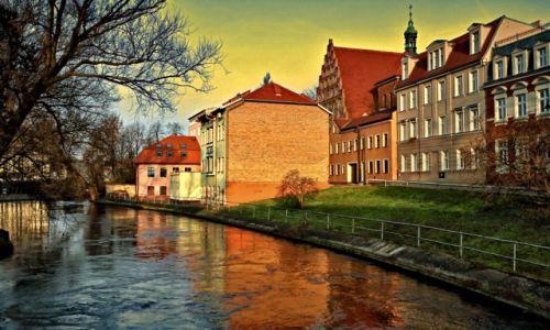 Zdjęcie POLSKA / kujawsko-pomorski / Bydgoszcz / Młynówka – odnoga rzeki Brdy opływające Wyspę Młyńską