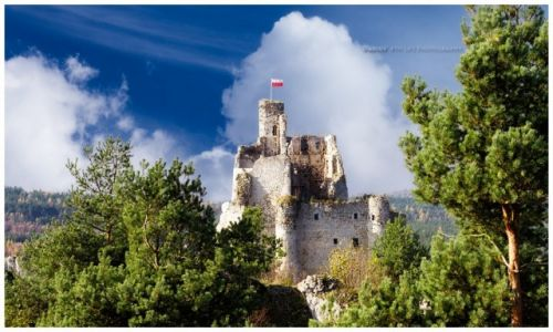 Zdjecie POLSKA / Jura Krakowsko-Częstochowska / Mirów / Mirów Castle I