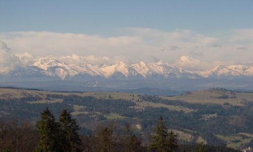 Zdjecie POLSKA / Beskid Sądecki / Wielki Rogacz / Są góry wyższe, ale czy piękniejsze?