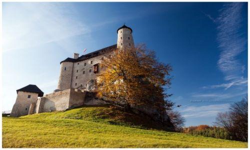 Zdjęcie POLSKA / Jura Krakowsko-Częstochowska / Bobolice / Bobolice Castle III