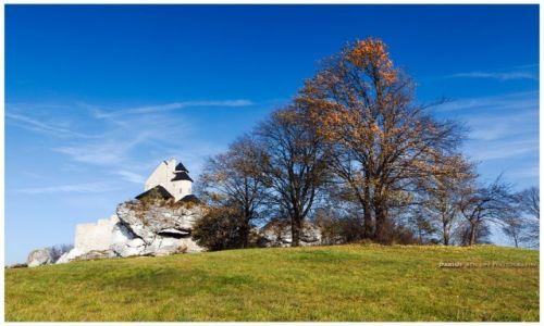 Zdjęcie POLSKA / Jura Krakowsko-Częstochowska / Bobolice / Bobolice Castle V