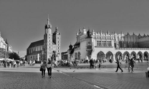 Zdjęcie POLSKA / Małopolska / Kraków / Kraków