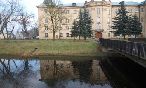 Zdjecie POLSKA / WIELKOPOLSKA / RYDZYNA / PIĘKNO WIELKOPOLSKI