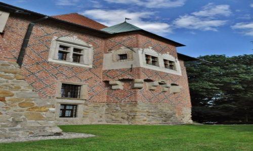 Zdjęcie POLSKA / Małopolskie / Dębno / Dębno, zamek