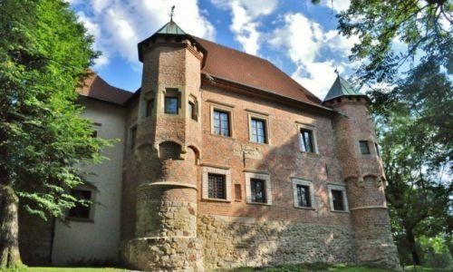 Zdjecie POLSKA / Małopolska / Dębno / Dębno, zamek