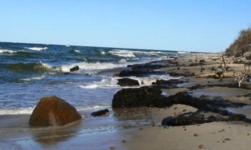 Zdjęcie POLSKA / Pomorze Środkowe / Rowy / na plaży