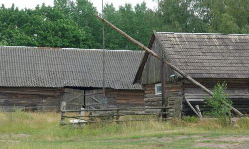 Zdjęcie POLSKA / Podlasie / Narew / zagroda w Narwi