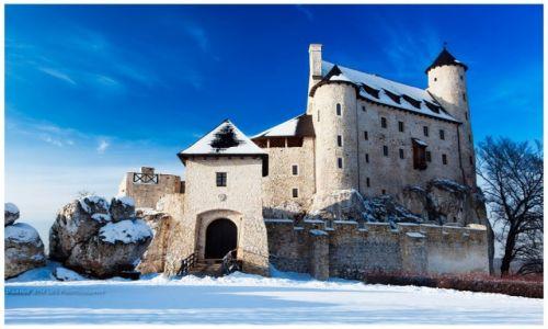Zdjęcie POLSKA / Jura Krakowsko-Częstochowska / Bobolice / Bobolice Castle VI