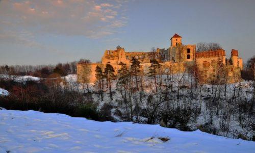 Zdjęcie POLSKA / Małopolska / Rudno / Ruiny