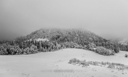 Zdjęcie POLSKA / Góry Kamienne / - / Waligóra