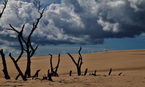 Zdjęcie POLSKA / - / Łeba / Prawie Namibia :)