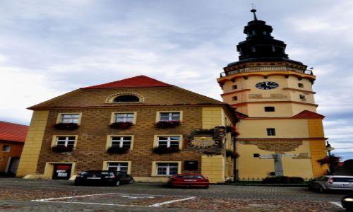 Zdjecie POLSKA / Woj.opolskie, powiat nyski / Otmuchów / Ratusz