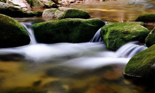 Zdjecie POLSKA / Dolny ŚLĄSK / gdzieś w górach / Pleynie woda płynie