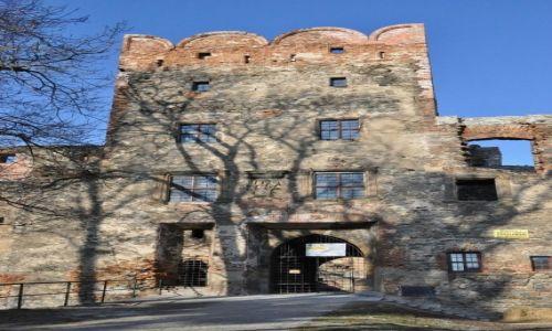 POLSKA / Dolny Śląsk / Ząbkowice Śląskie / Ząbkowice Śląskie, ruiny zamku