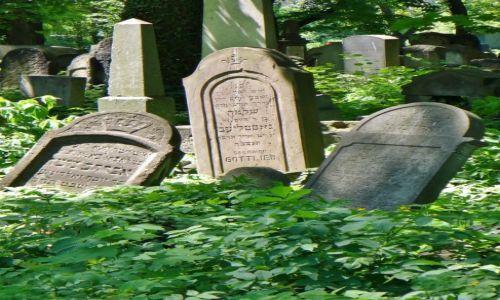 Zdjęcie POLSKA / Małopolska / Kraków / Kraków, cmentarz żydowski
